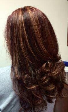 Brown Hair With Caramel And Auburn Highlights Chestnut Hair Hair Color Auburn Hair Highlights