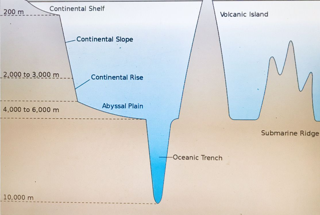 Pin by Henryarun on Geology Ocean trench, Continental