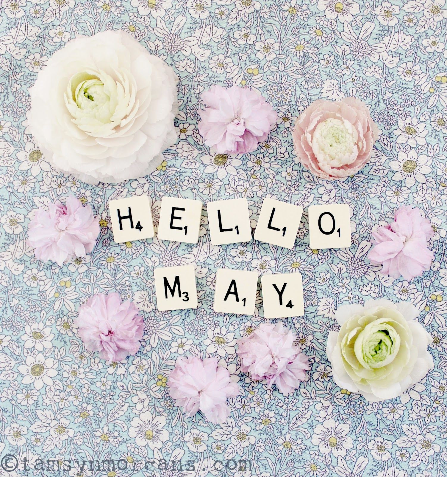 Hello everyone, Happy May Day! Here in the UK we have an