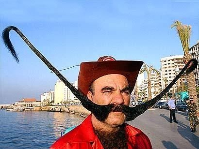 The Mega Handlebar Movember - Mr incredibeard really coolest beard ever seen