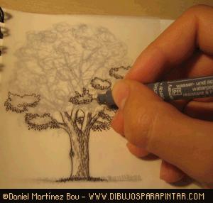 Como Dibujar Arboles Y Plantas Como Dibujar Arboles Dibujos De Arboles Como Dibujar Plantas