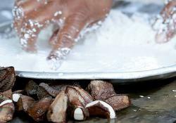 La tradición de la leche de castaña