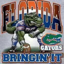 Pin By Tammy Martin On Sports Florida Gators Football Gators