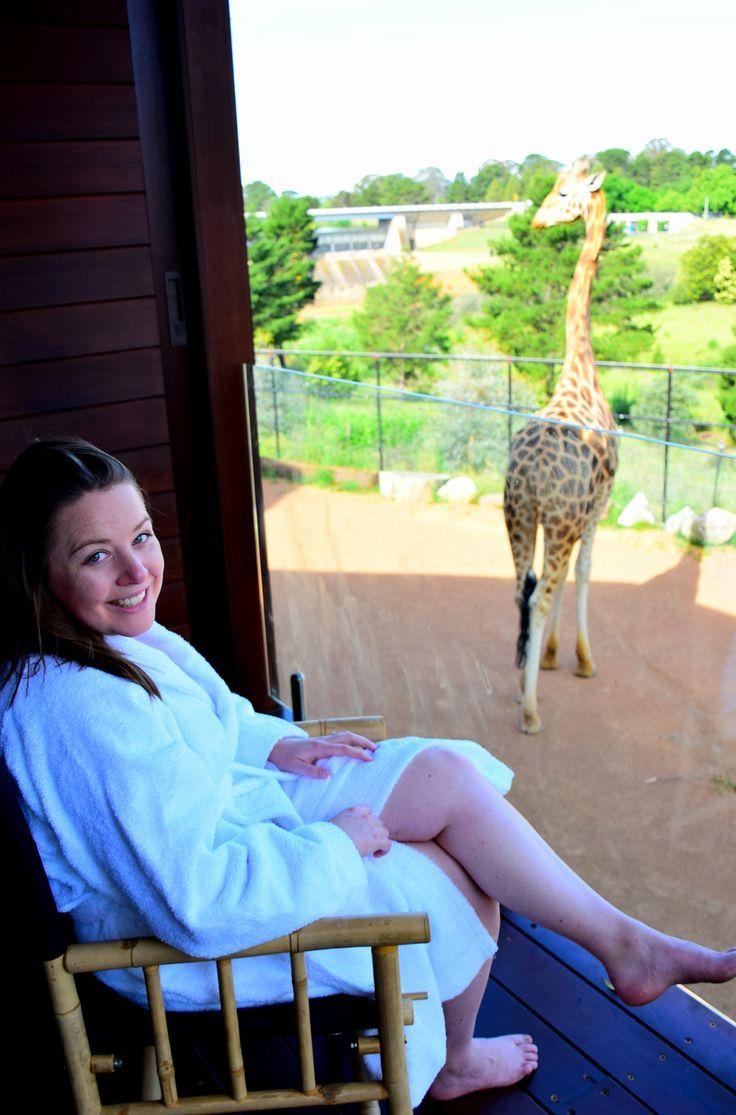 Overnight Sleepover at Australia's National Zoo: J