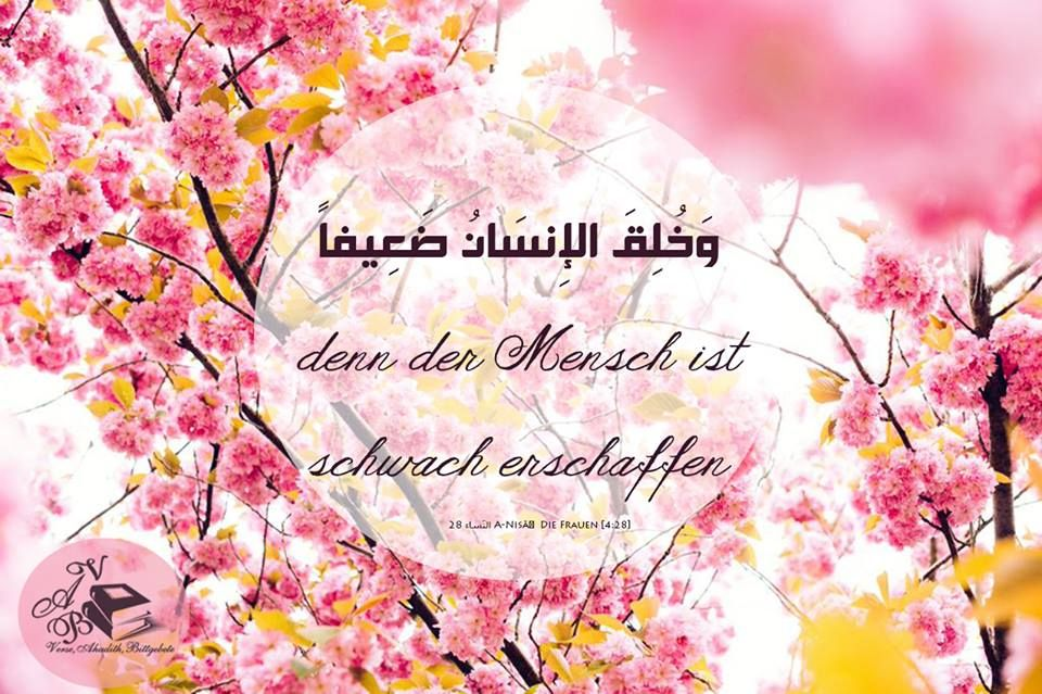 Pin by abdu on islam deutsch arabisch pinterest easter greetings happy easter from finding wonderland wishing you a full happy day of laughter good people and smiles m4hsunfo