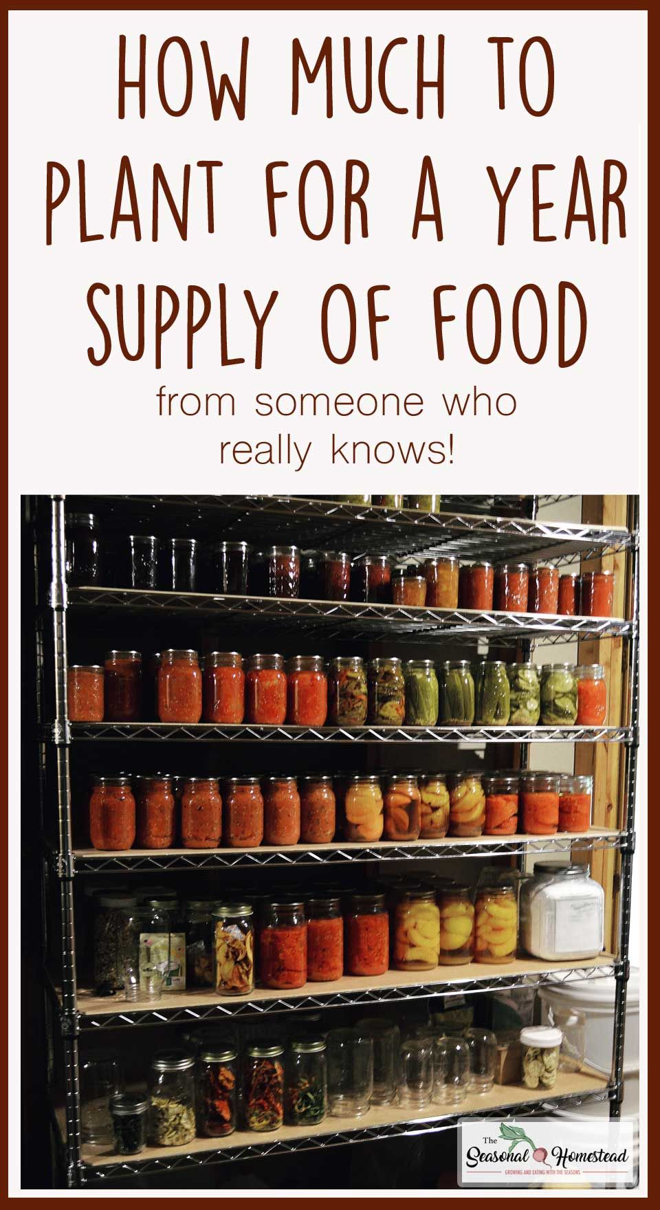 Learn how much you need to plant for a year supply of food for your family. Includes a free printable chart to help you on your way to self-sufficiency. Be self sufficient on as little as a quarter acre backyard garden!
