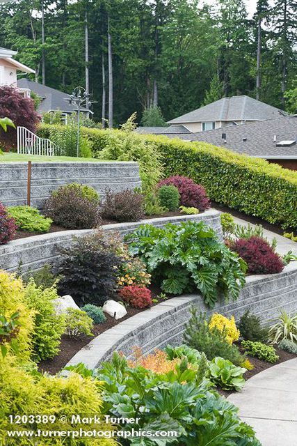 Amazing Examples of Terraced Front Yard Gardens | Garden ... on Terraced Yard Landscape Ideas id=68537