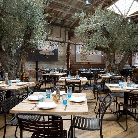 Best Top Chef Restaurants La Jolla California And