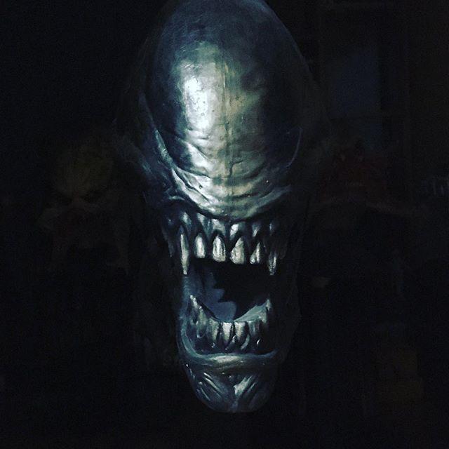Pin Von Robert Salamon Auf Alien