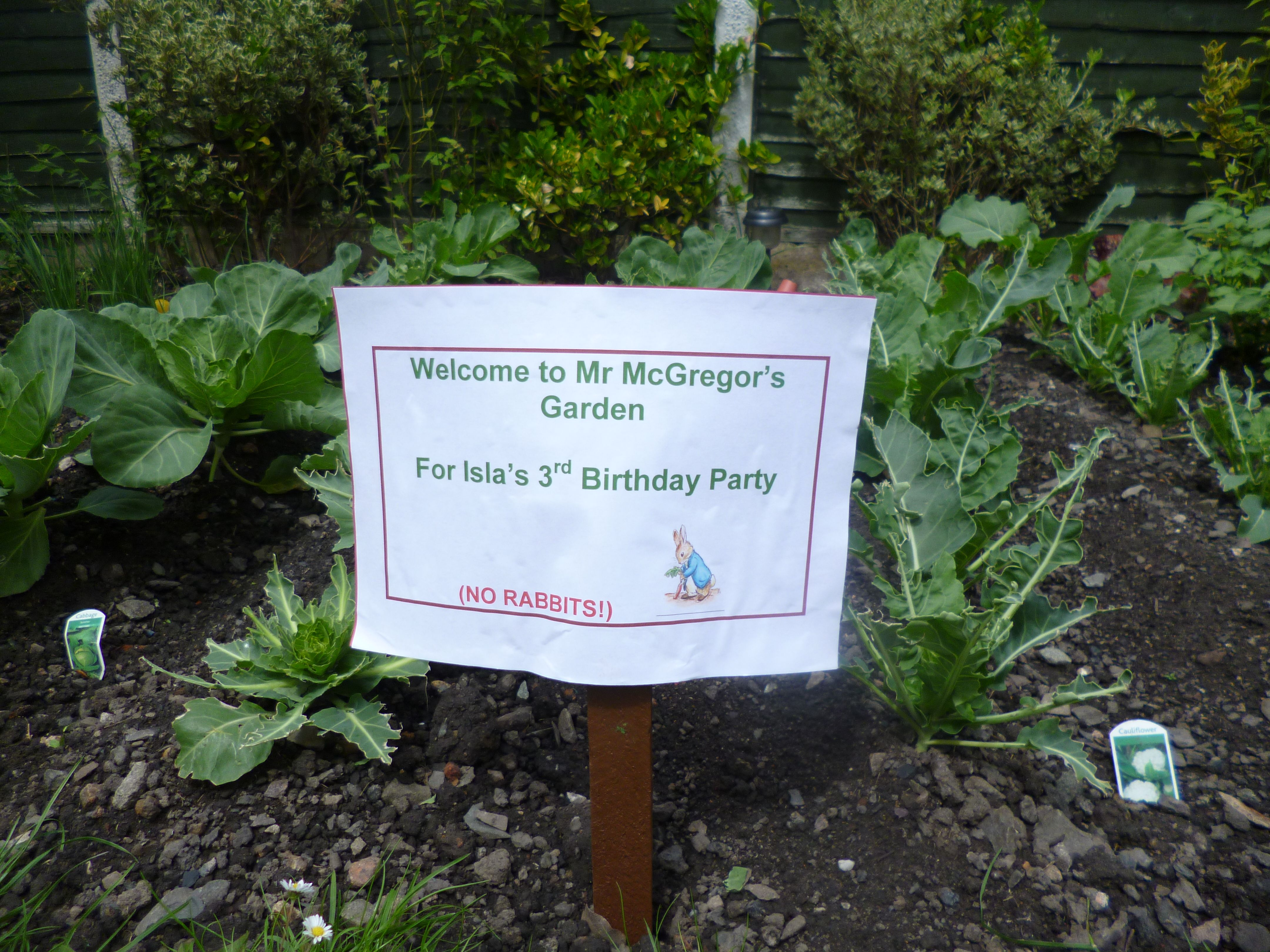 A sign at Isla's Peter Rabbit themed 3rd birthday party