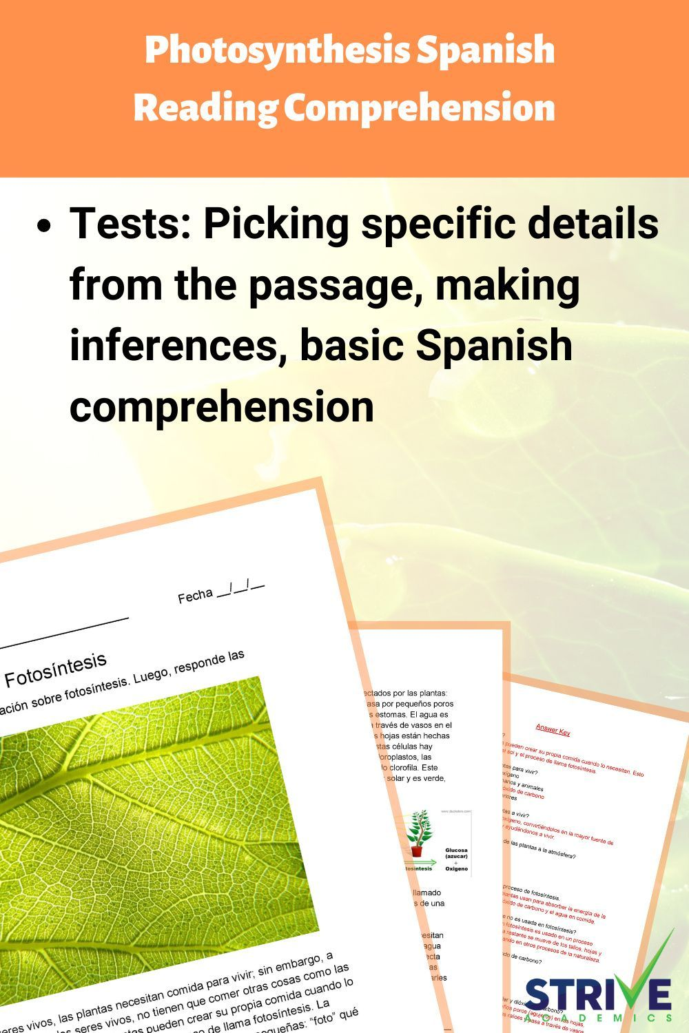 Photosynthesis Spanish Reading Comprehension Worksheet Reading Comprehension Spanish Reading Comprehension Reading Comprehension Worksheets [ 1500 x 1000 Pixel ]