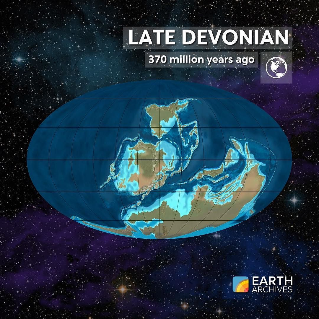 by the late devonian some 370 million years ago jawed
