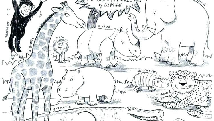 Pin On African Animal Coloring Book In 2021 Zoo Animal Coloring Pages Animal Coloring Pages Animal Coloring Books