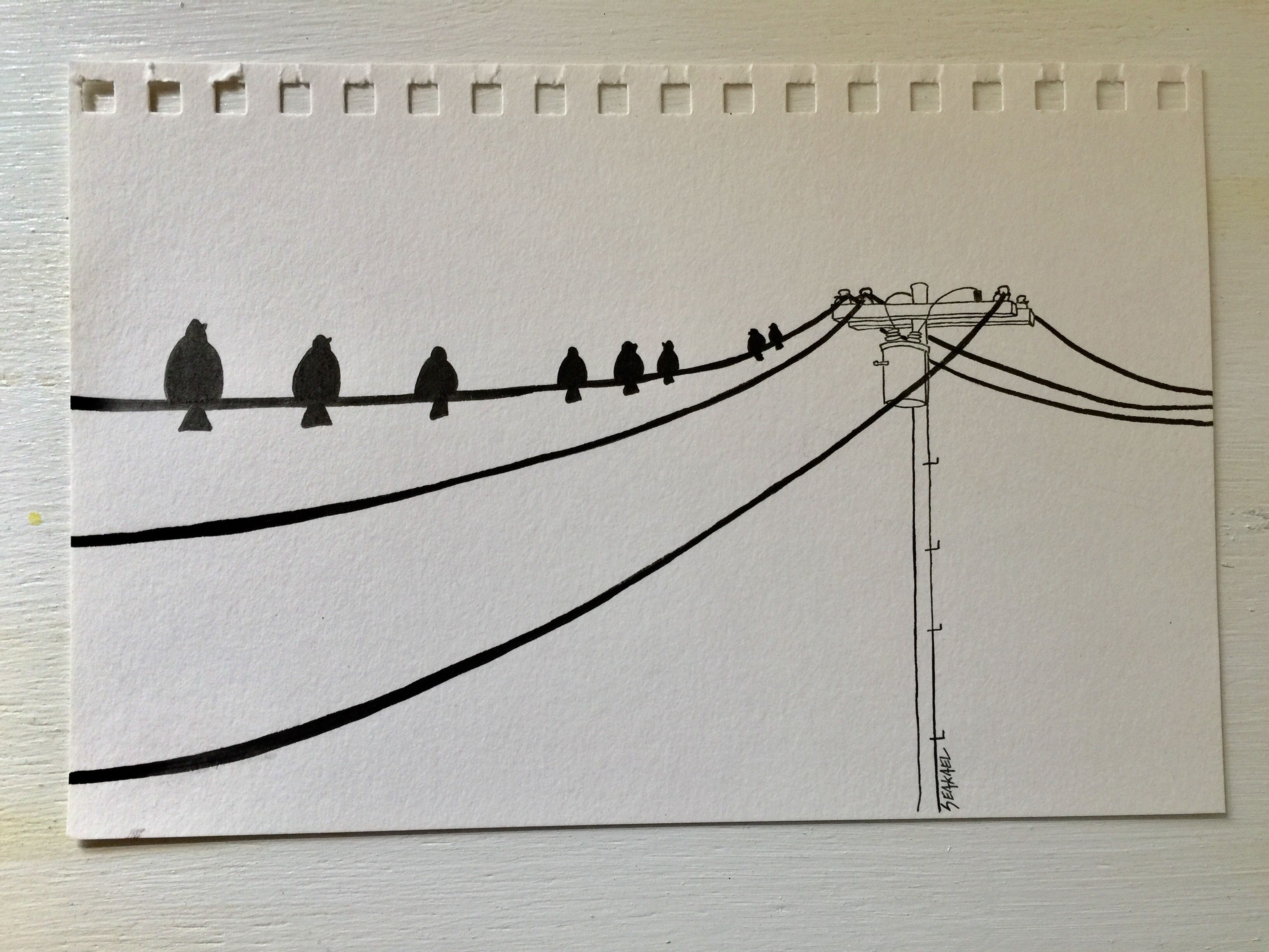 illustration #sketch #copic #birds #telephonepole #seakayel | Art ...