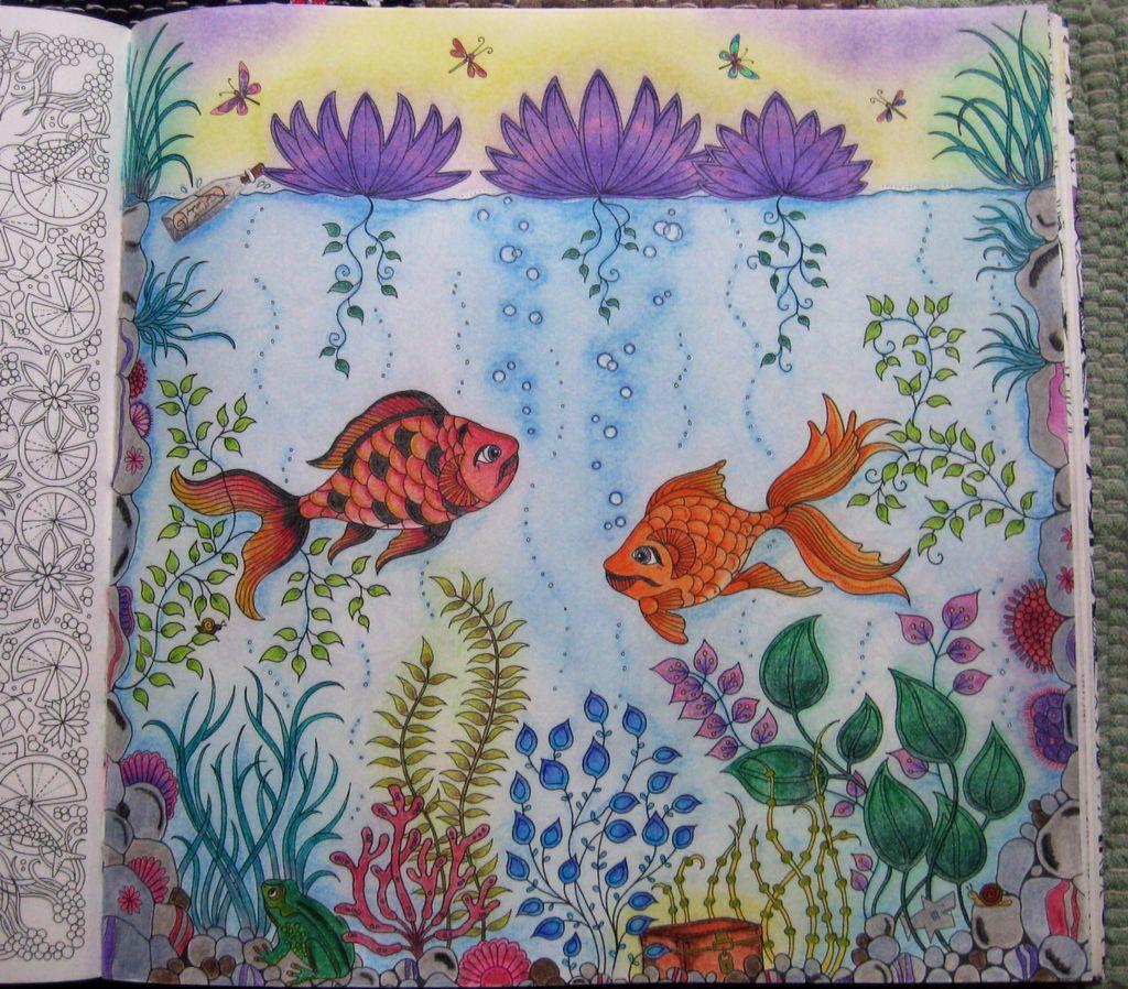 Visjes Kleurboek Kleurpotloden Kleuren