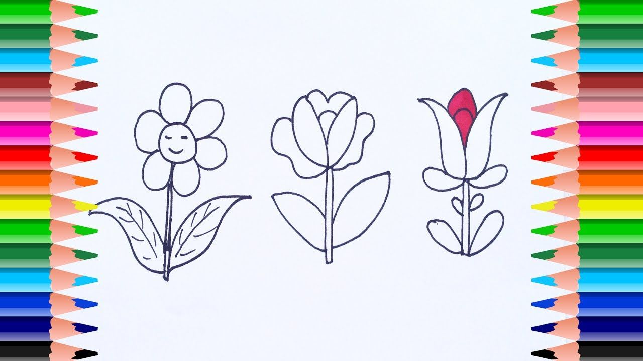 Parts Of A Plant Coloring Sheet Parts Of A Flower Coloring P On Animal Cell Color Page Worksheet And Quiz Ce Parts Of A Flower Parts Of A Plant Teaching Plants [ 1748 x 1748 Pixel ]