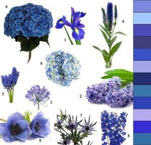 Blaue Blumen Hochzeit Und Silberhochzeit Blumen Hochzeit Deko