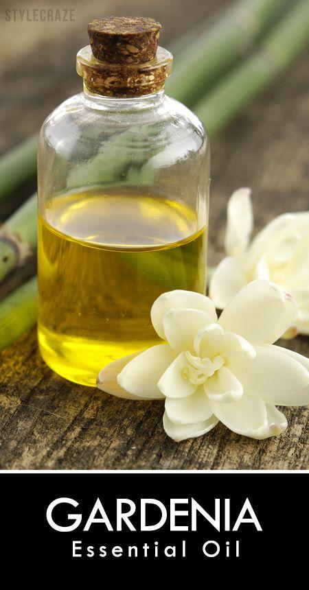 7 Amazing Benefits Of Gardenia Essential Oil Gardenia Essential Oil Gardenia Essential Oils