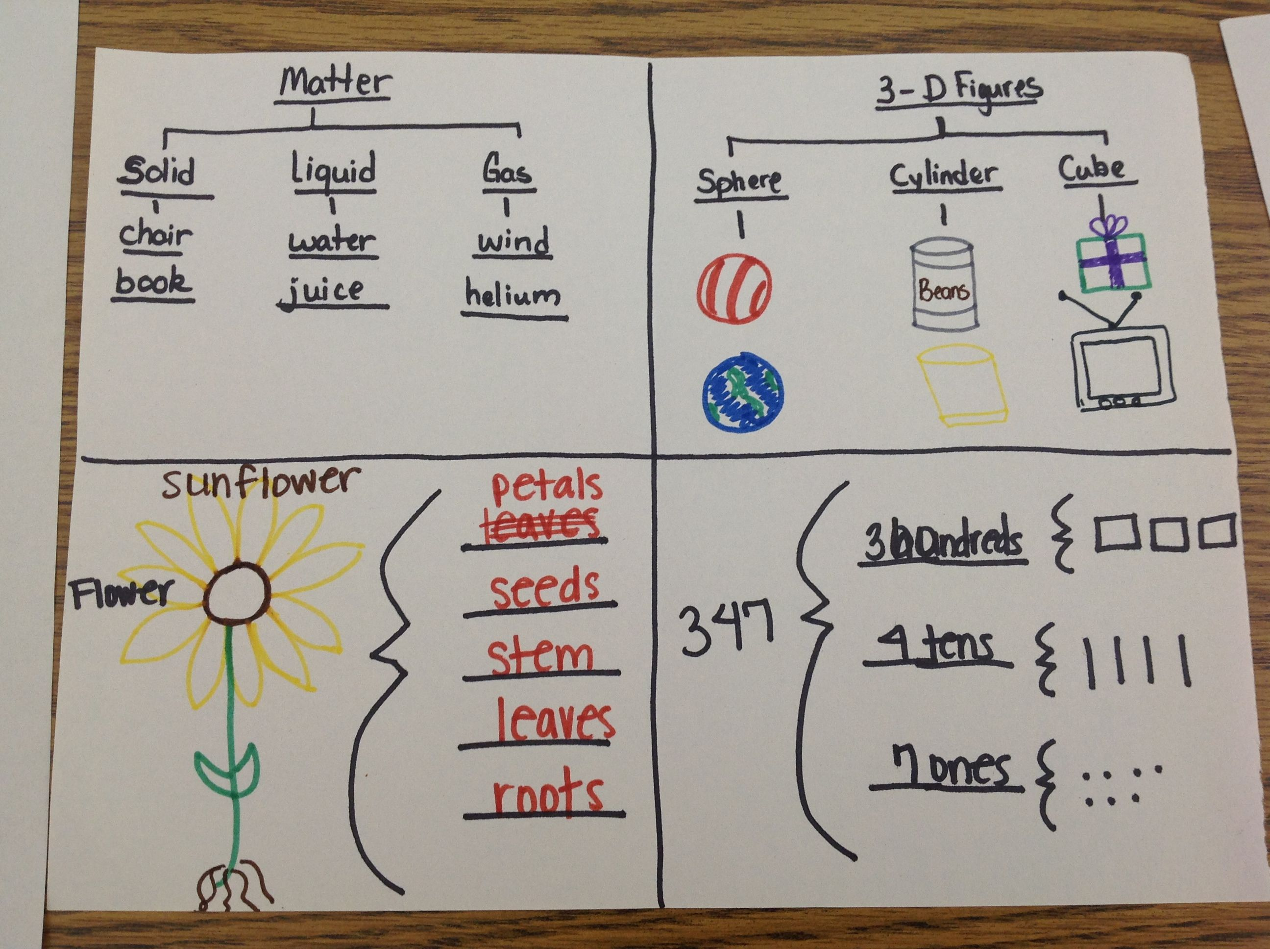 Thinking Maps Place Values Shapes Classroom Pinterest