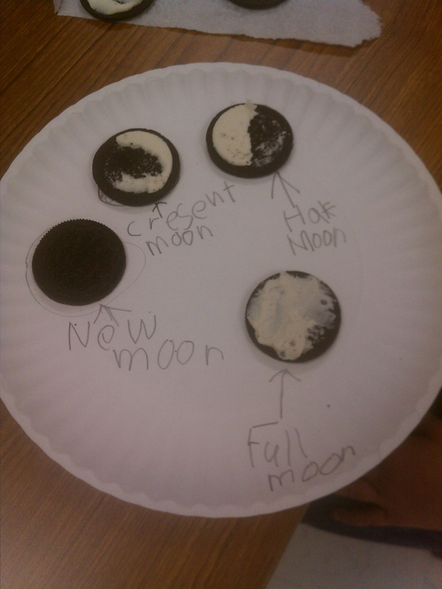 From My Class Phases Of The Moon Activity With Oreo Cookies