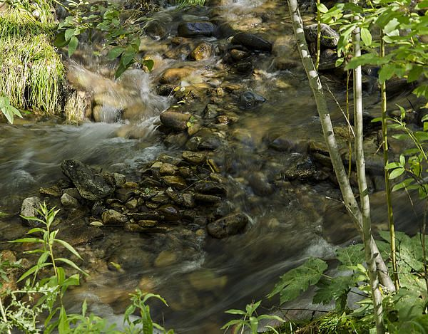 Mountain Creek Serenity- Samantha Jerred-Copyright-All Rights Reserved