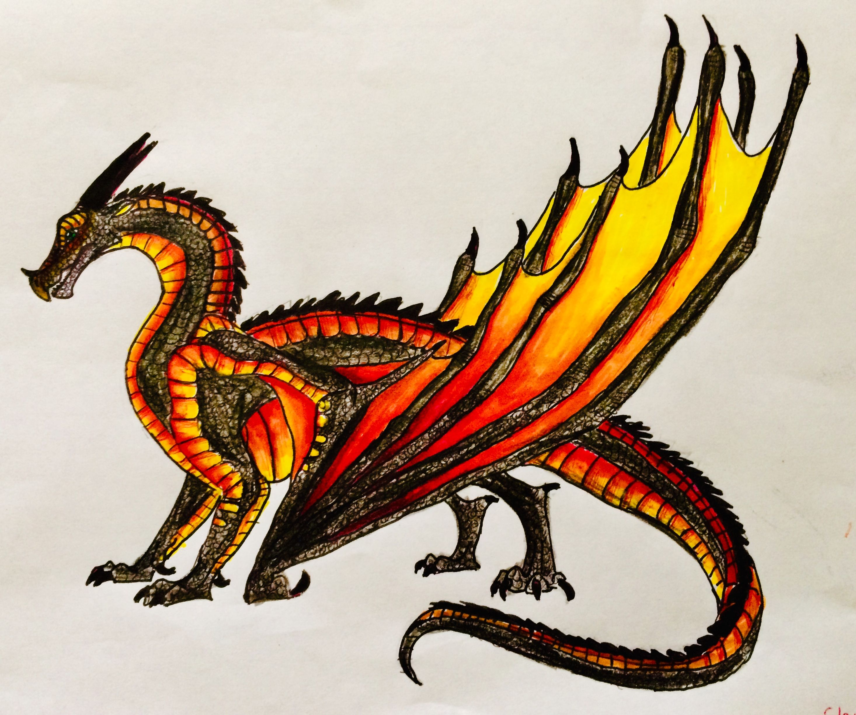Nightwing Skywing Hybrid Wings Of Fire Dragons Wings Of Fire Fire Dragon