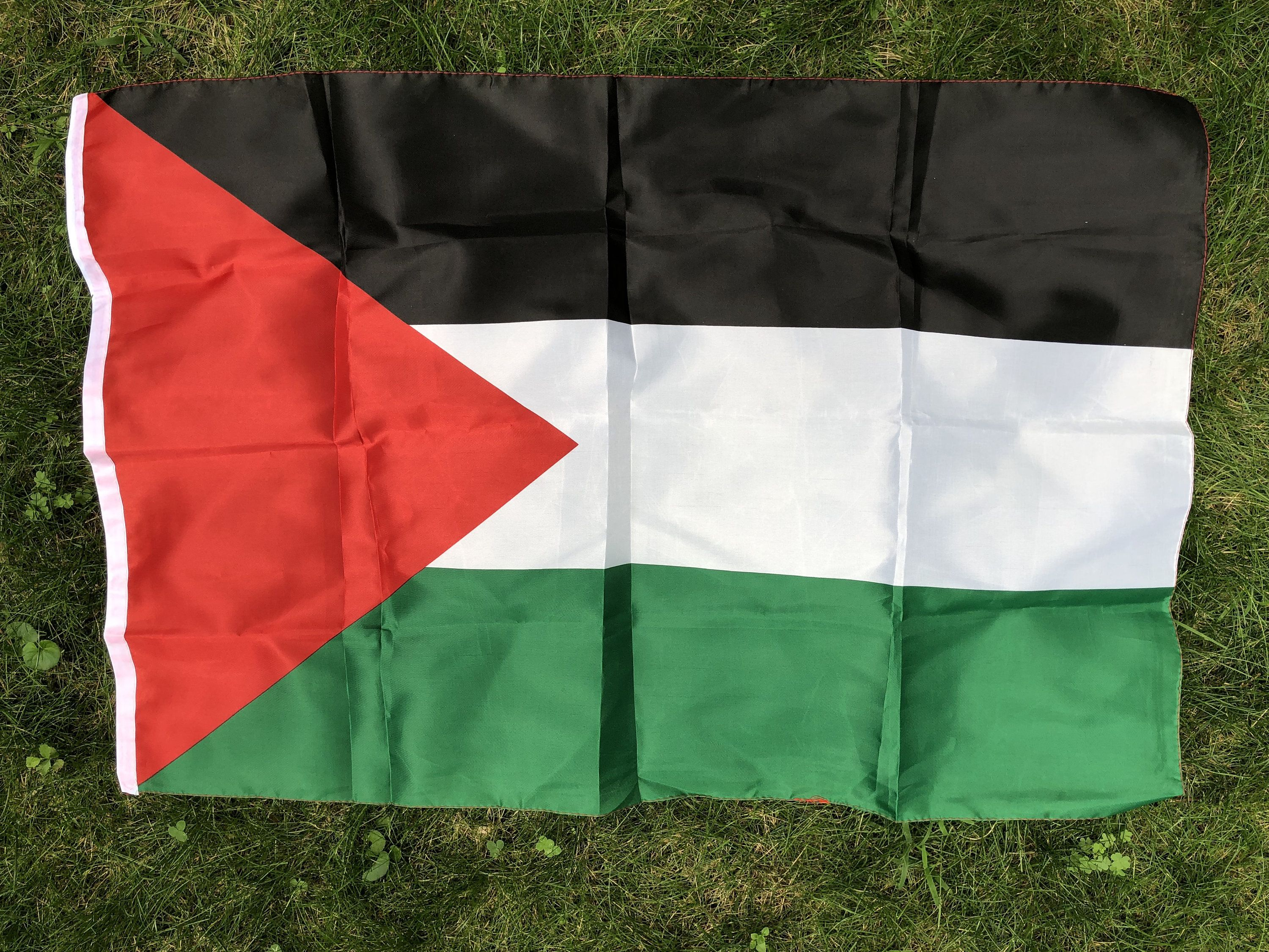 Small Palestinian Flag Red Triangle Black White Green Flag Etsy Triangle Red Black And White