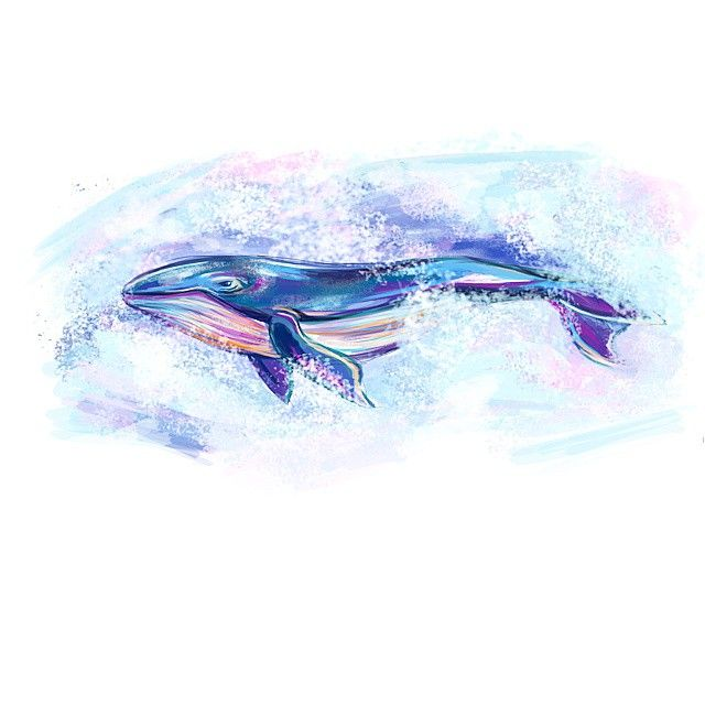 Lord of Whales Péarla D3a012bcf306895e69273319b0110d35