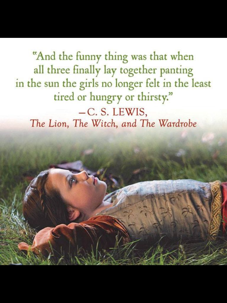 ~The lion, the witch and the wardrobe~