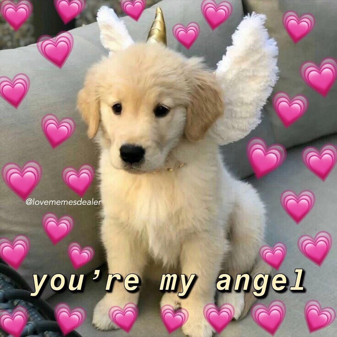 This Is So Cute Follow Lovememesdealer For More Mood Cutememe Lovememes Wholesomememes Memes Me Cute Memes Love You Meme Cute Love Memes