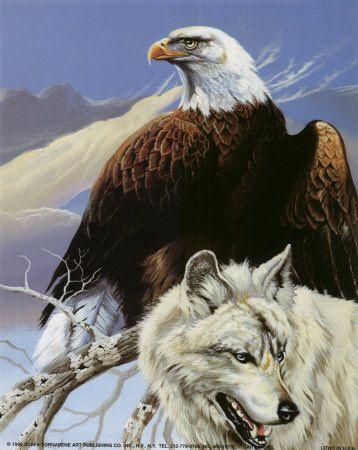 Indiens Et Loups Aigles Et Autres Rapaces Loup Aigle Et Aigle