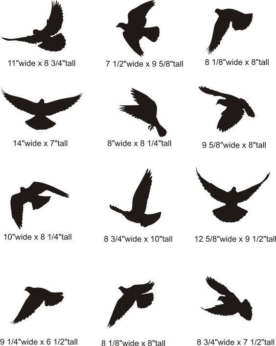 Cb8f563fbe499871d863acb63bee03a0 Jpg 564 706 Pixels Small Bird Tattoos Silhouette Tattoos Flying Tattoo