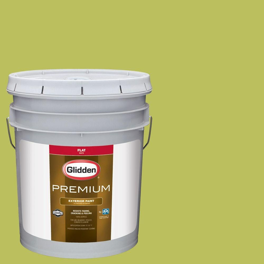 Glidden Premium 5-gal. #HDGG14D English Apple Flat Latex Exterior Paint