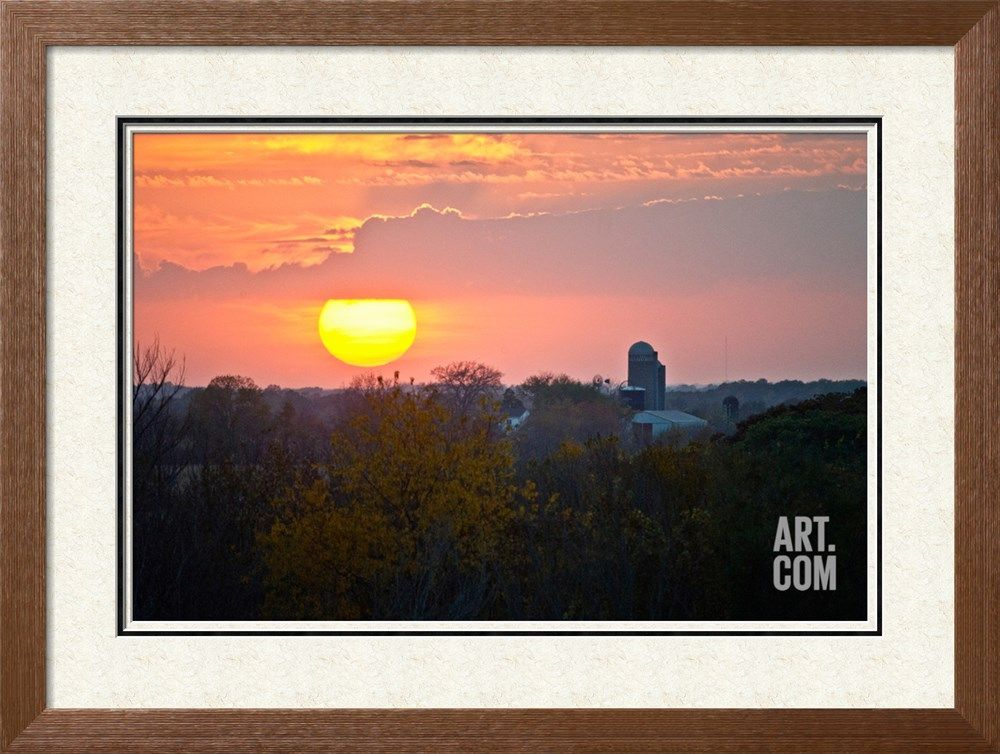 Trees and Farm Sunset, Wisconsin, USA Photographic Print by Green Light Collection at Art.com