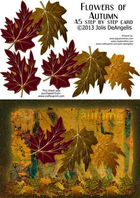 Flowers of Autumn A5 step by step on Craftsuprint designed by Jolis DeAngelis - O,Autumn, how gorgeous you are! And this card shows the splendors of falling leaves, arrayed in brilliant hues of gold, brown and red. Great seasonal card for any occasion. - Now available for download!