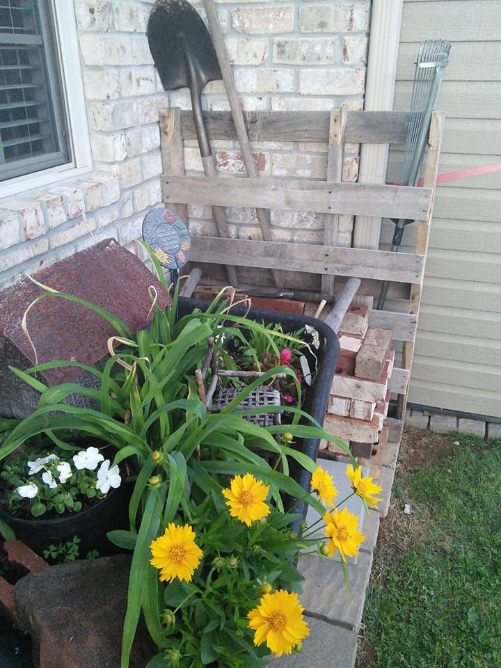 Garden in an old wheelbarrow and tool rack made from a pallet.