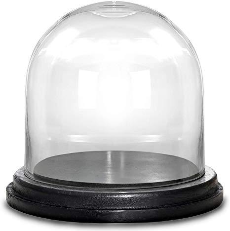 Amazon Com Cys Excel Glass Dome Cloche Bell Jar Terrarium Showcase Piece Decorative Display Case Home Kitchen Glass Domes Display Case The Bell Jar