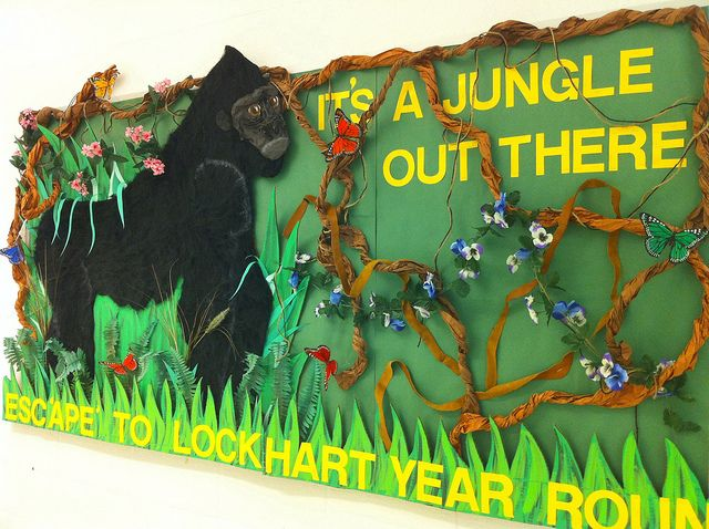 Jungle Bulletin Board Jungle theme classroom Jungle theme and