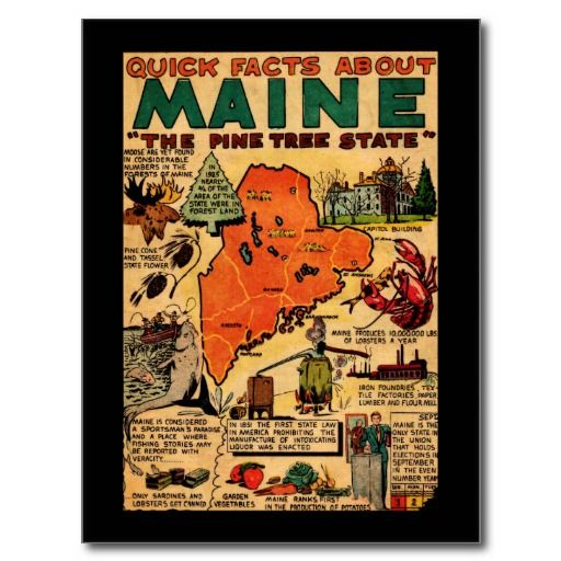Fun Facts about Maine <3