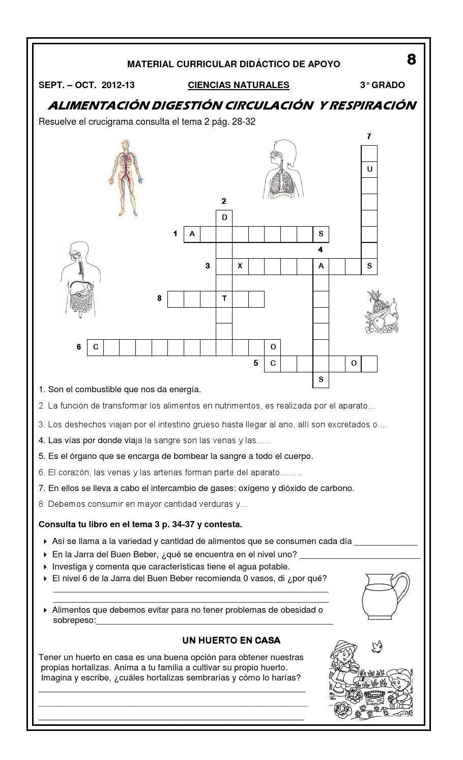 3 guia bloque 1 Sistemas del cuerpo humano Aparatos
