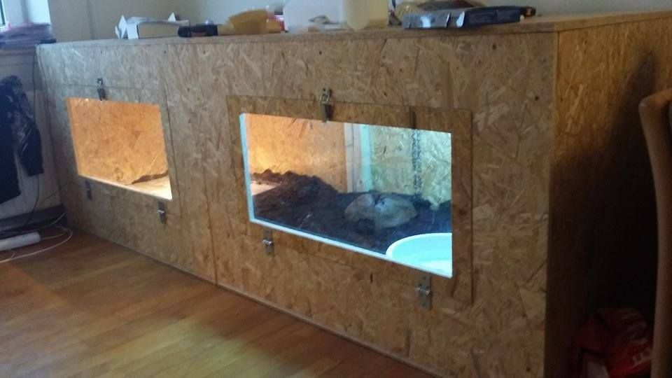 how to build an enclosure tegus from around the world outdoor