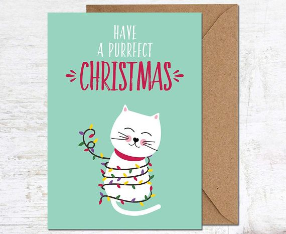 Boxed Cat Christmas Cards.Cat Christmas Card Funny Cat Christmas Card Christmas Card Boxed