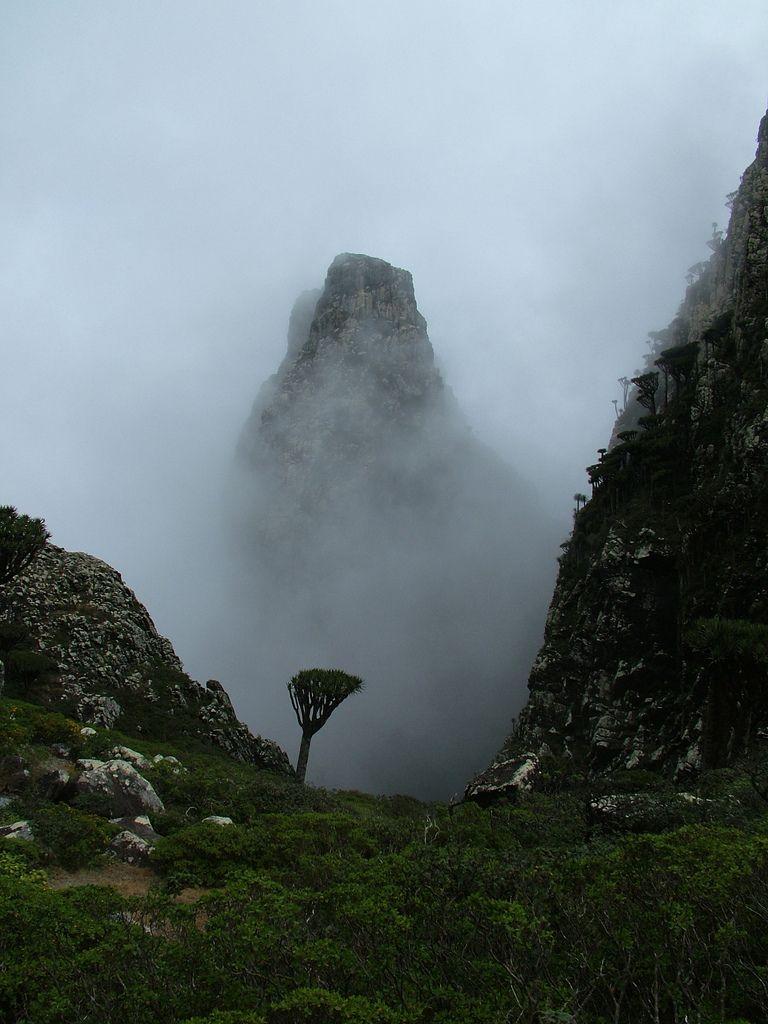 The Mist Socotra Yemen Tropical Islands