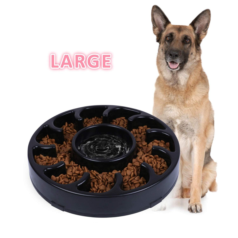 Pin On Dog Feeding