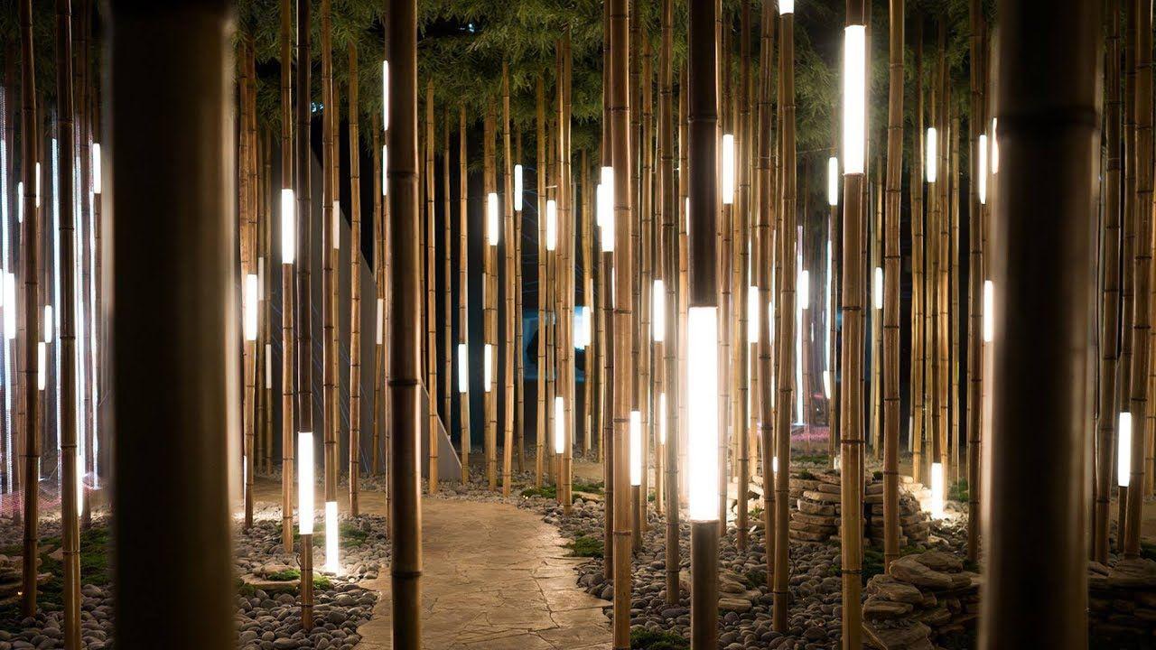 Lexus Dome Bamboo Forest Bamboo Art Installation Light Art