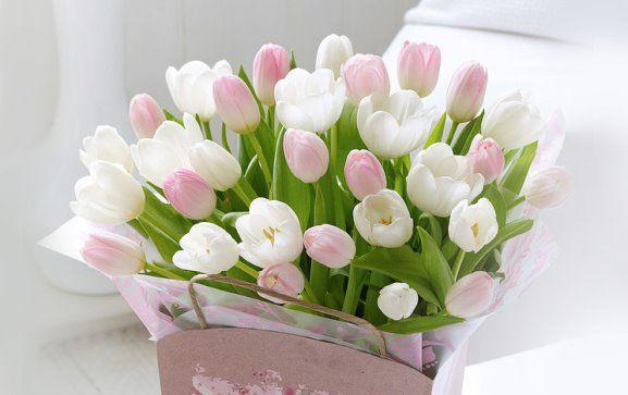 Одноклассники | С днем рождения, День рождения и Цветы