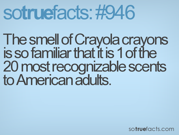 Funny Facts, True Facts, Interesting Facts, Weird Facts ...