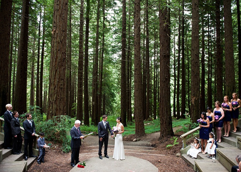 Uc Botanical Garden At Berkeley Garden Facilities One Day Pinterest Wedding Venues