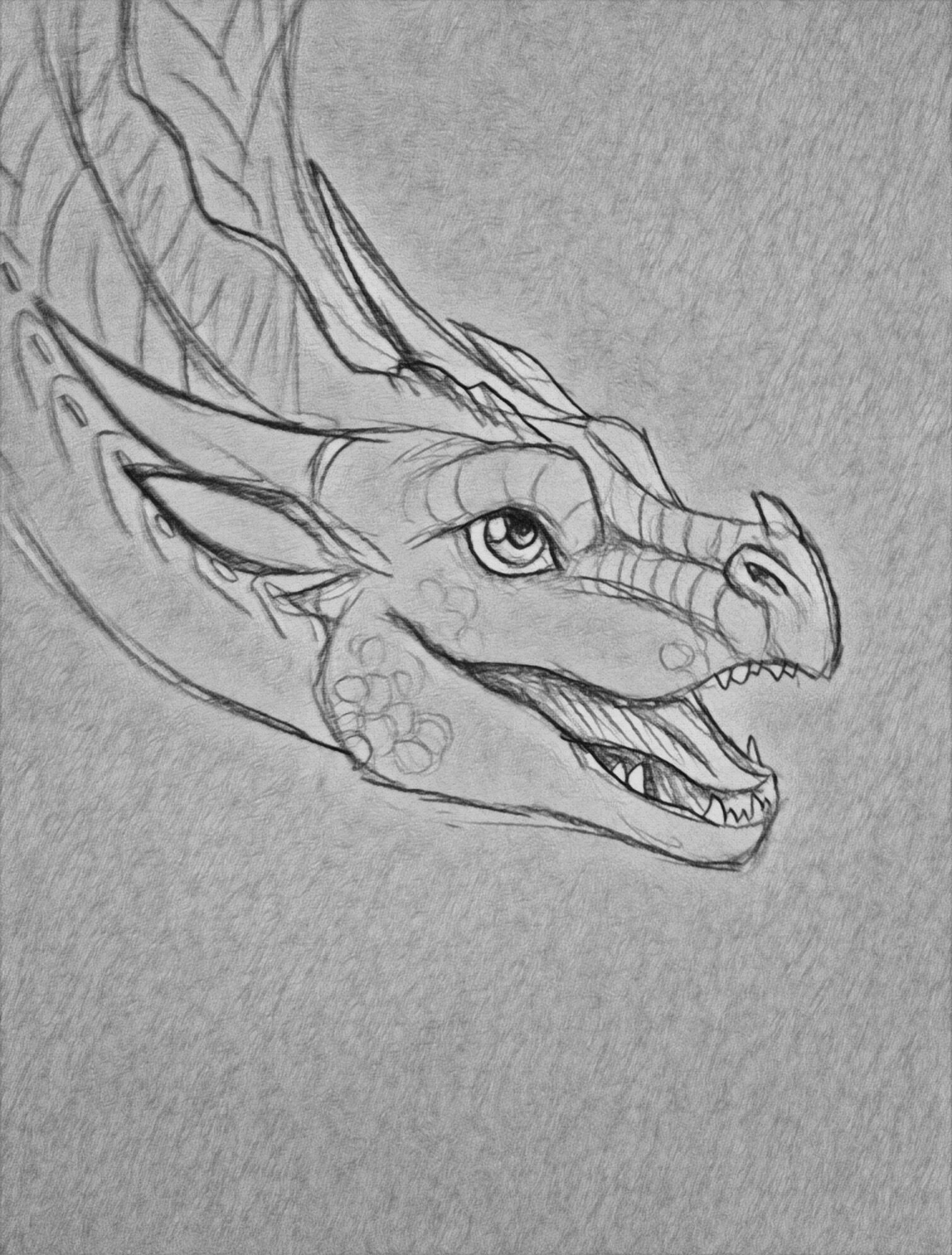 Soleado Soleado In 2020 Dragon Sketch Wings Of Fire Dragons Wings Of Fire