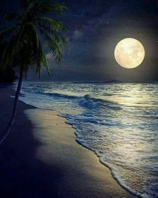 Beautiful Beautiful Moon Night Skies Beautiful Landscapes